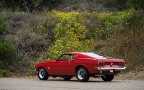 Picture Mustang, Ford, Muscle, 1969, Red, Car, Classic, Musclecar, Boss, American, 429, NasCar