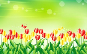 Picture butterfly, figure, vector, meadow, tulips