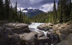 Picture forest, mountains, river, stones, waterfall, Mistaya Canyon