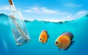 Picture sea, letter, fish, the ocean, bottle, underwater, sea, message, bottle