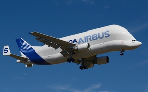 Picture the plane, jet, cargo, Beluga, widebody, A300-600ST