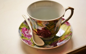 Picture spoon, Cup, saucer