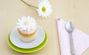 Picture flower, Daisy, spoon, decoration, cream, dessert, cakes, sweet, cupcake