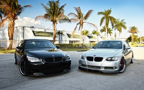 Picture the sky, palm trees, tuning, two, BMW