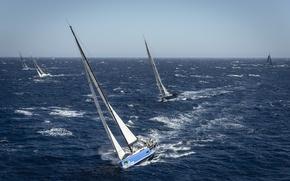 Picture sea, sport, yachts, regatta