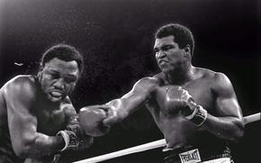 Picture 1975, 3 battle, Joe Frazier, blow, Trilla in Manila, Muhammad Ali