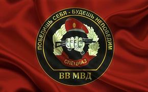Picture symbol, motto, Special forces, MIA