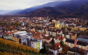Wallpaper autumn, forest, nature, the city, hills, building, home, Germany, panorama, Germany, Baden-Württemberg, Baden-Wurttemberg, Freiburg im ...