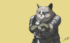 Picture Minimalism, Cat, Knight, Cats, Knights