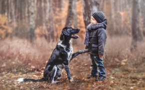 Picture mood, dog, boy, friends