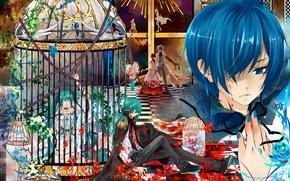 Wallpaper vocaloid, tears, Kaito
