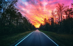 Picture road, forest, sunset