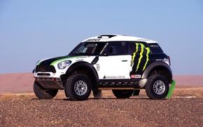 Picture white, Mini, Mini Cooper, Dakar, SUV, Rally, Mini, Side view, 2014, X-raid, on the spot