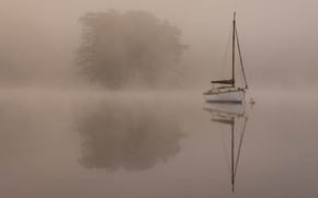 Picture trees, landscape, fog, boat, pond, Wallpaper from lolita777, simply