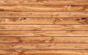 Picture house, tree, texture, flooring, floor