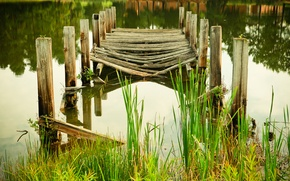 Picture water, lake, pond, river, plant, the bridge