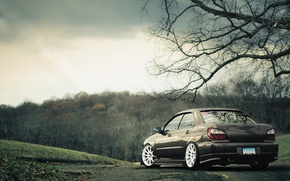 Wallpaper autumn, nature, Subaru