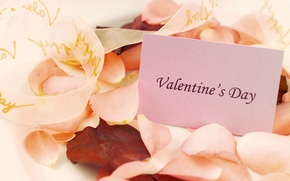 Wallpaper love, the inscription, holiday, rose petals, Valentine's day