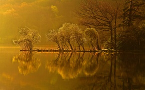 Picture autumn, forest, trees, sunset, lake, reflection, island
