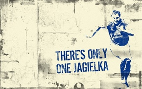 Picture Jagielka, Phil Jagielka, Everton