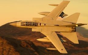 Picture flight, pilots, fighter-bomber, Panavia Tornado