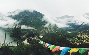 Picture green, trees, nature, cloud, colours, mountain, fog, Asia, clothes, leafage, rice fields