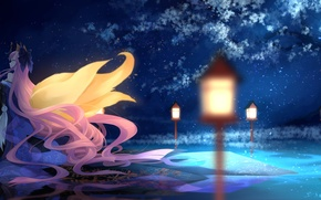 Picture water, girl, night, reflection, tree, anime, art, lights, ears, fate/stay night, tails, caster, bzerox