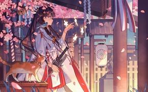 Picture cat, magic, Sakura, lantern, temple, kimono, bird, priestess, flowering, long hair, art, udlj331