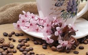 Wallpaper flowers, coffee, branch, Cup, fabric, burlap, saucer, grain