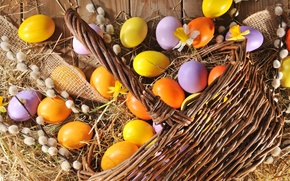 Picture eggs, spring, Easter, happy, wood, Verba, spring, Easter, eggs, holiday