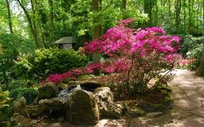 Picture greens, Park, green, spring, garden, fountain, Nature, flowering, park, flowers, garden, spring, fountain
