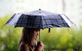 Wallpaper girl, rain, Wallpaper, umbrella