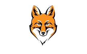 Picture face, animal, minimalism, head, Fox, red, fox