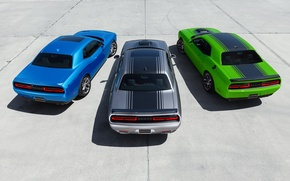 Picture Dodge, Challenger, Trio, Muscle Cars, R/T 2015, SXT 2015