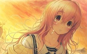 Picture girl, sunset, tears, Kimi to Kanojo to Kanojo no Koi, Mukou Aoi