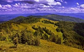 Picture clouds, mountains, field, Ukraine, forest, Carpathians