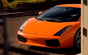 Picture orange, yellow, Lamborghini, gallardo, yellow, orange, Lamborghini