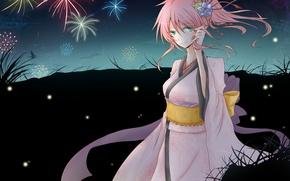 Picture flower, girl, night, butterfly, art, fireworks, Vocaloid, Vocaloid, Megurine Luka