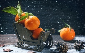 Wallpaper sleigh, holiday, winter, bumps, tangerines, Board, new year, fruit