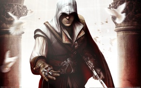 Wallpaper Assassin's Creed, medallion, pigeons