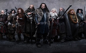 Picture weapons, people, war, dwarves, staff, The Hobbit An Unexpected Journey, The hobbit an Unexpected journey