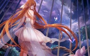 Wallpaper girl, clouds, night, grille, dress, art, ears, sword art online, yuuki asuna, asukaziye