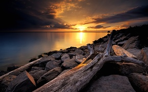 Picture the sky, the sun, clouds, sunset, lake, stones, tree