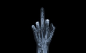 Wallpaper Wallpaper, hand, bones, x-ray, wallpaper, the, fuck u, Fuck You