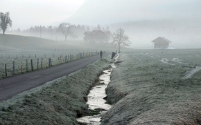Picture road, fog, people