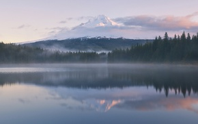 Picture forest, reflection, fog, lake, mountain