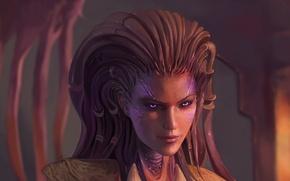Picture art, Sarah Kerrigan, Kerrigan, Sulfur, Starcraft II