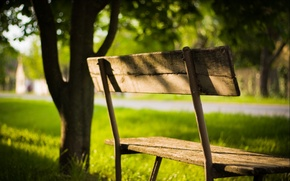 Picture greens, summer, leaves, the sun, rays, light, trees, bench, nature, background, Wallpaper, shadow, plants, day, …