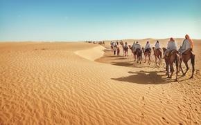 Picture sand, desert, caravan, camels, tourism