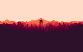 Picture forrest, firewarch, montains